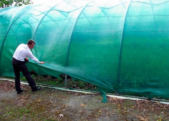 Защитная и затеняющая сетка для сельского хозяйства